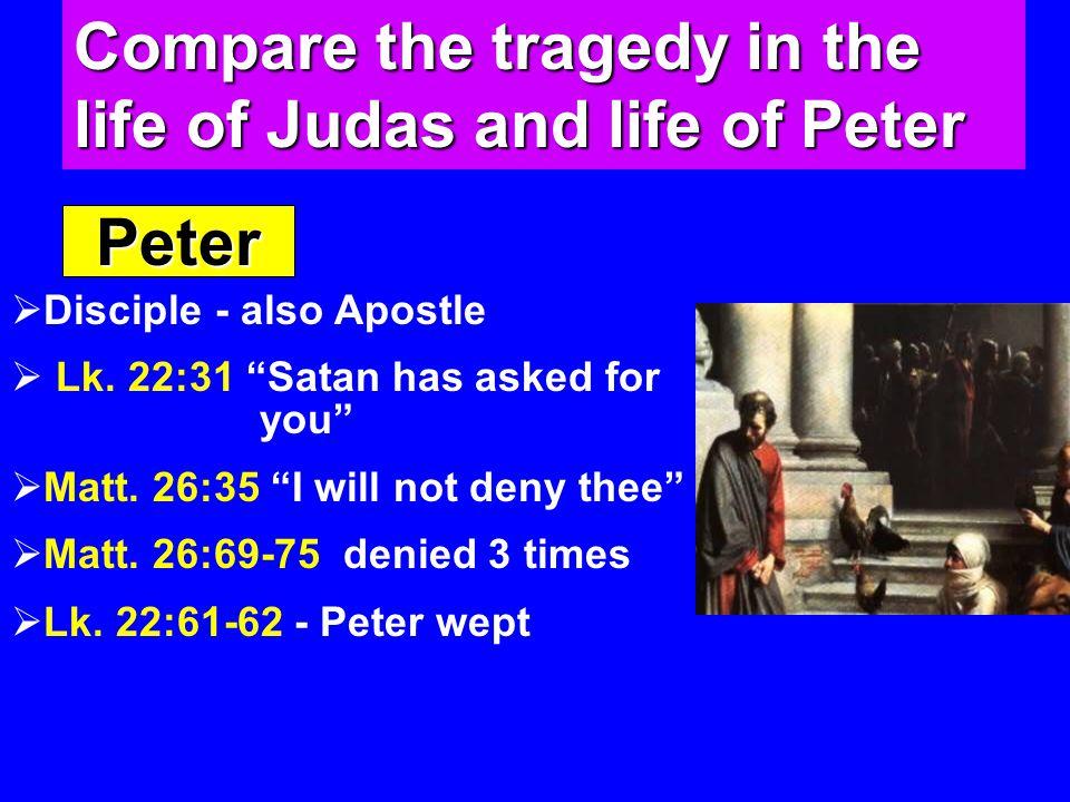 Peter  Disciple - also Apostle  Lk. 22:31 Satan has asked for you  Matt.