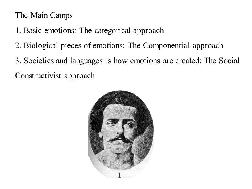 The Main Camps 1.Basic emotions: The categorical approach 2.