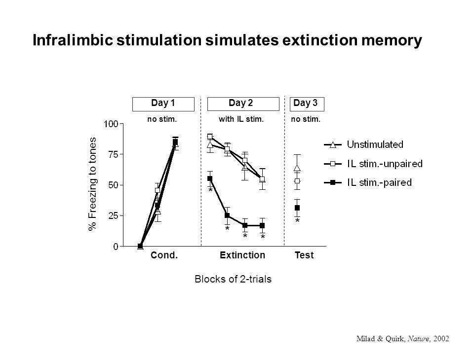 Infralimbic stimulation simulates extinction memory Cond.Extinction % Freezing to tones * * * * Day 1Day 2 * Test Day 3 no stim.with IL stim.no stim.