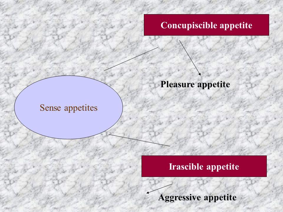 Sense appetites Concupiscible appetite Irascible appetite Pleasure appetite Aggressive appetite