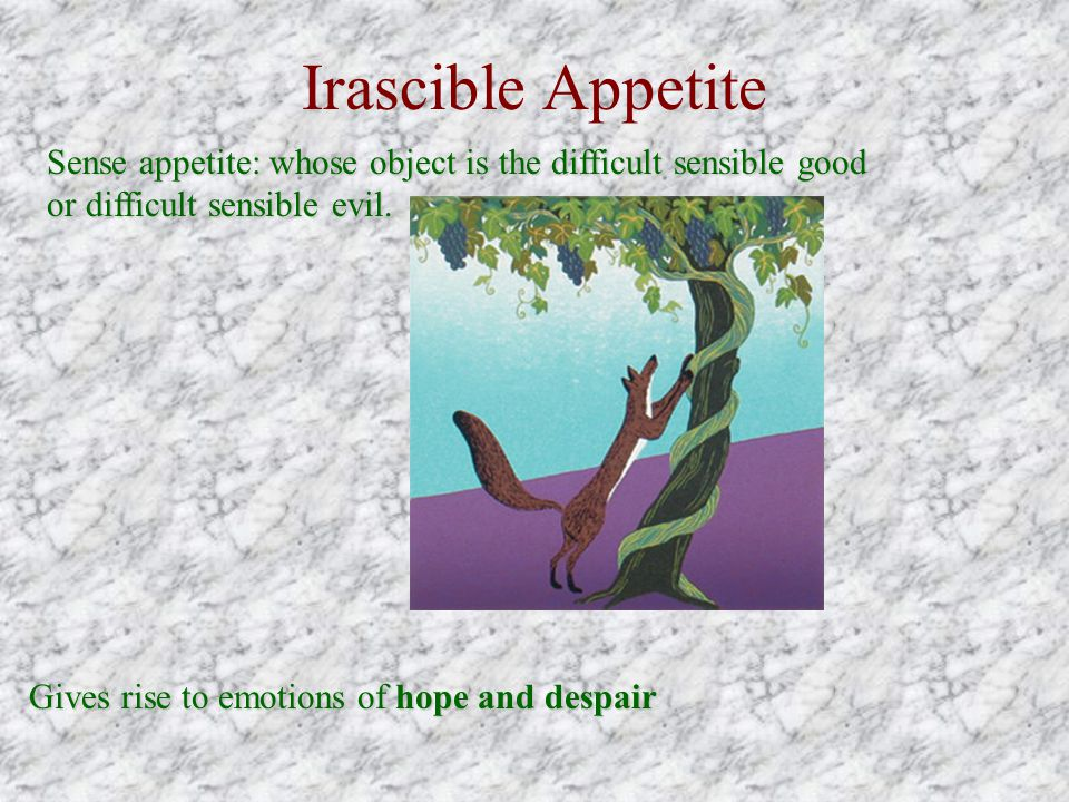 Irascible Appetite Sense appetite: whose object is the difficult sensible good or difficult sensible evil.