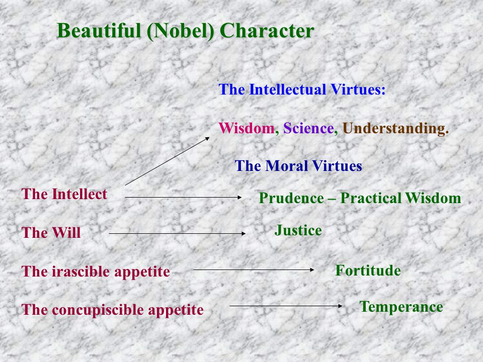 The Intellectual Virtues: Wisdom, Science, Understanding.