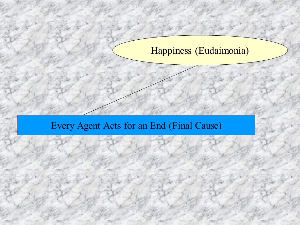 Every Agent Acts for an End (Final Cause) Happiness (Eudaimonia)