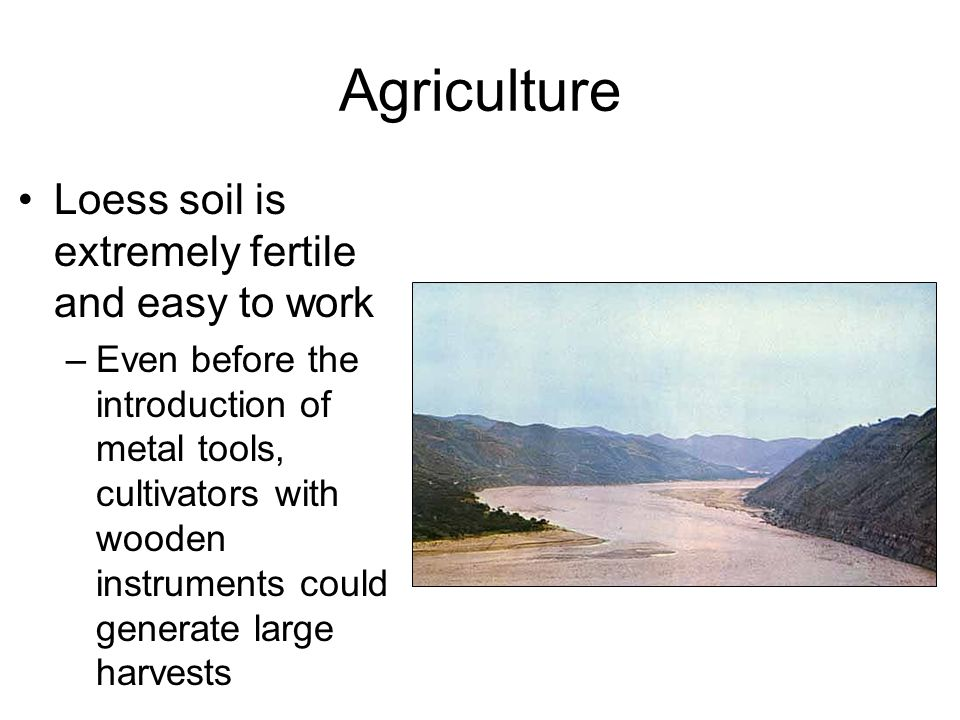 Agriculture Loess soil is extremely fertile and easy to work –Even before the introduction of metal tools, cultivators with wooden instruments could generate large harvests