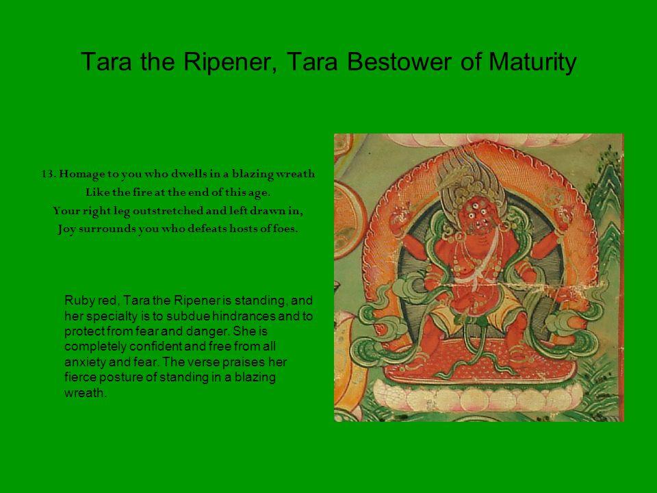 Tara the Ripener, Tara Bestower of Maturity 13.