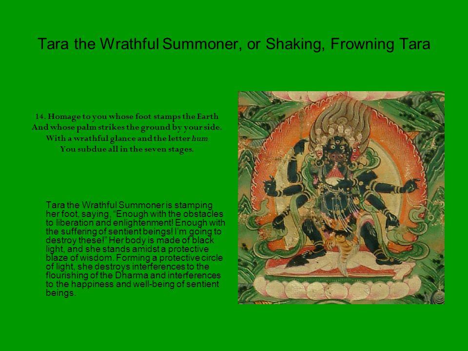 Tara the Wrathful Summoner, or Shaking, Frowning Tara 14.