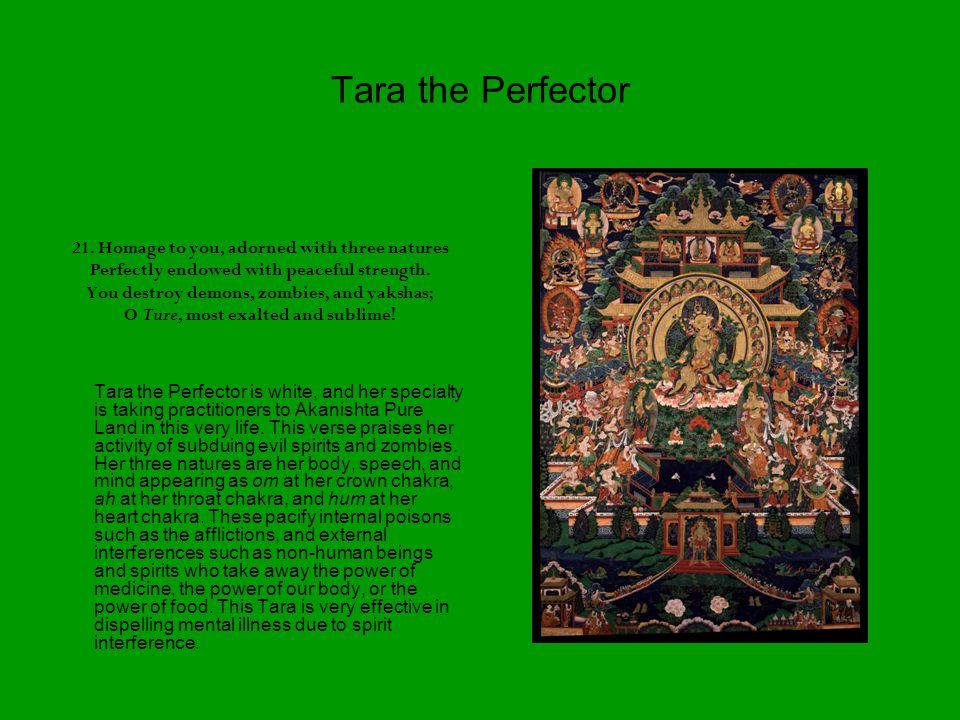 Tara the Perfector 21.