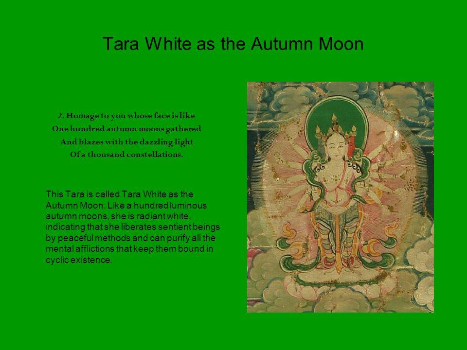 Tara White as the Autumn Moon 2.