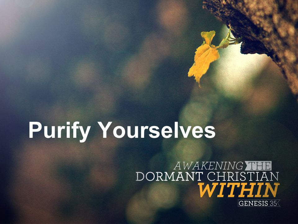 Purify Yourselves