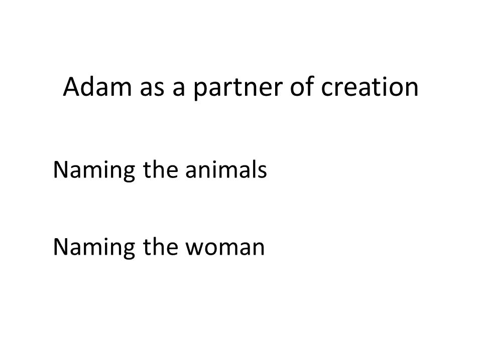 Adam as a partner of creation Naming the animals Naming the woman