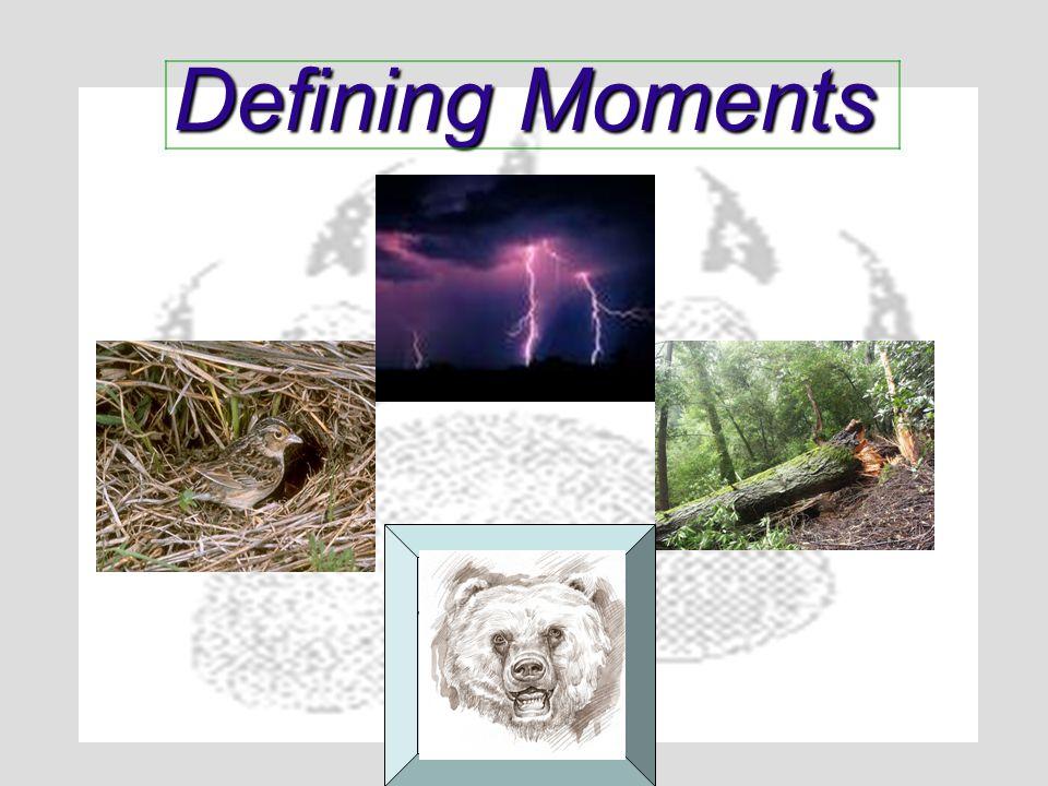 Defining Moments Spirit Bear Attack