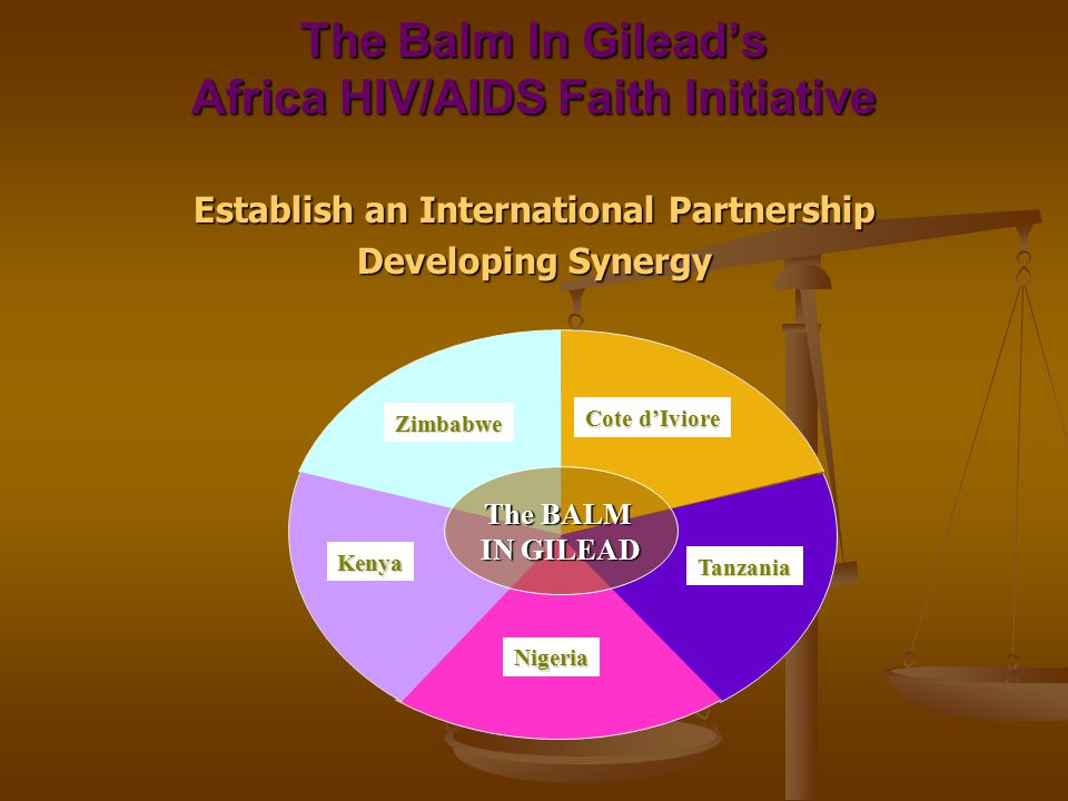 The Balm In Gilead's Africa HIV/AIDS Faith Initiative Establish an International Partnership Developing Synergy Zimbabwe Kenya Nigeria Cote d'Iviore Tanzania The BALM IN GILEAD