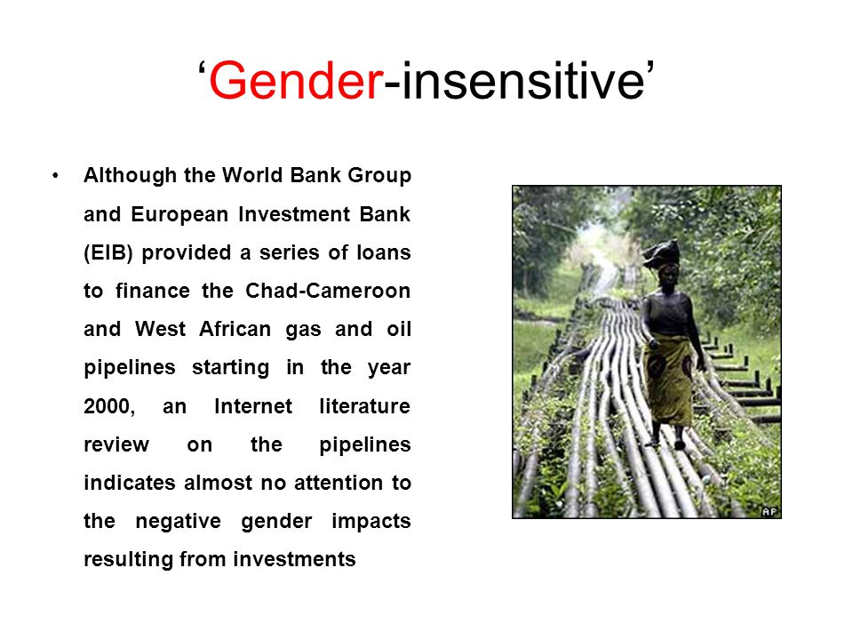 'Gender-insensitive' Although the World Bank Group and European Investment Bank (EIB) provided a series of loans to finance the Chad-Cameroon and West African gas and oil pipelines starting in the year 2000, an Internet literature review on the pipelines indicates almost no attention to the negative gender impacts resulting from investments