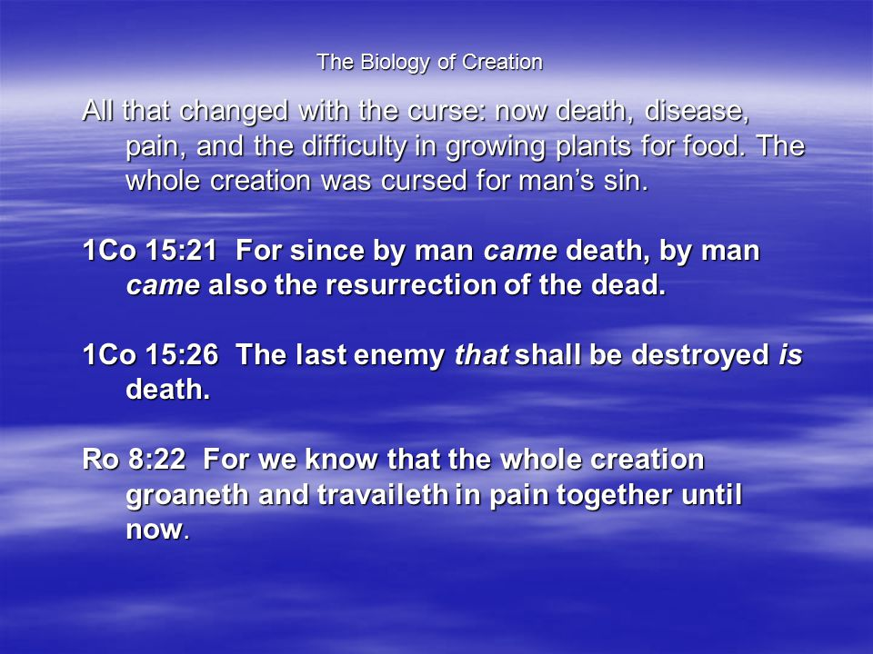 The Biology of Creation All that changed with the curse: now death, disease, pain, and the difficulty in growing plants for food.
