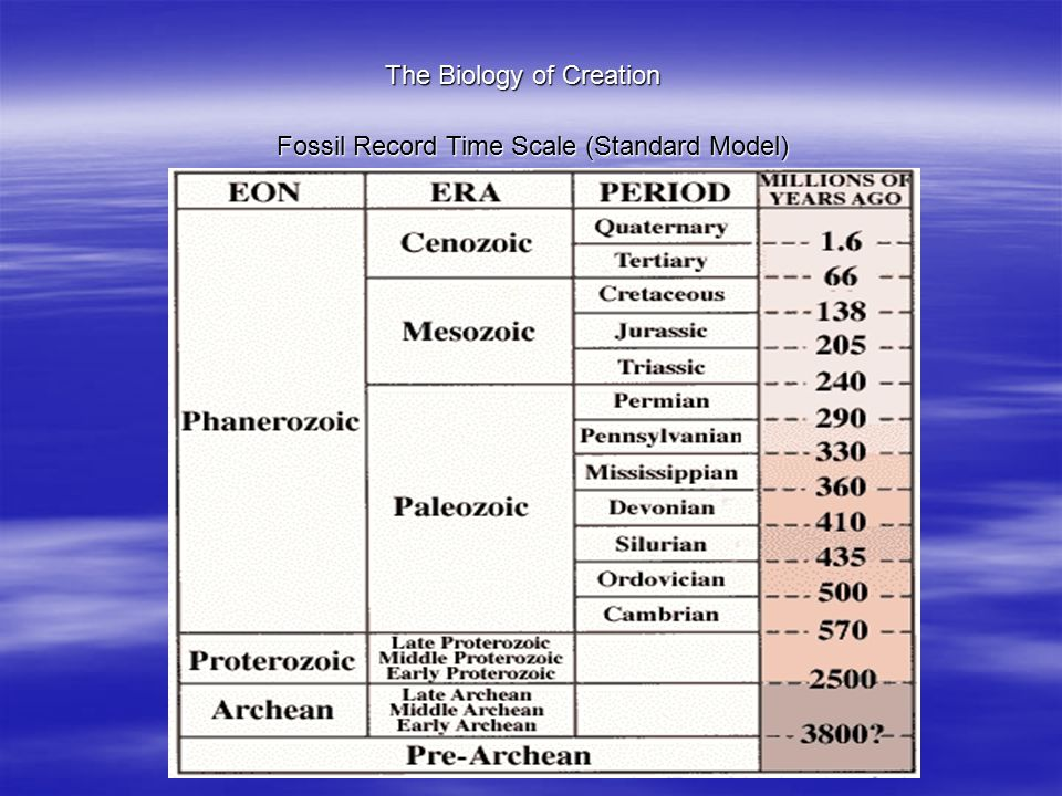 The Biology of Creation Fossil Record Time Scale (Standard Model)