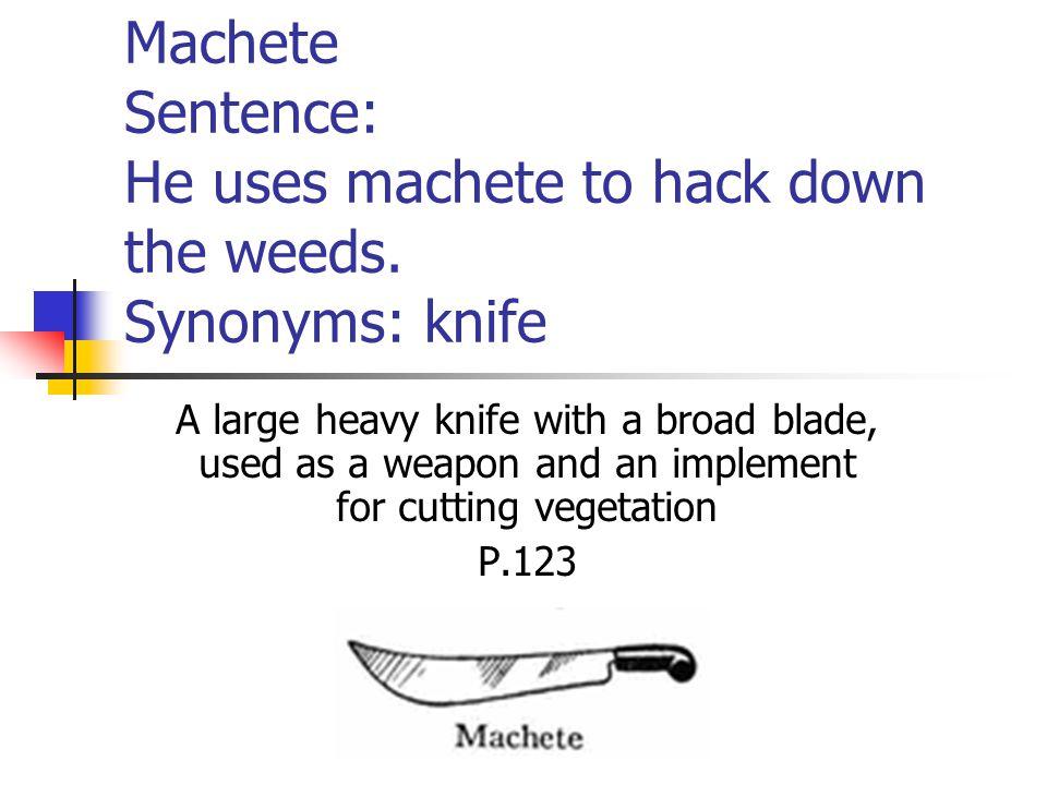 Machete Sentence: He uses machete to hack down the weeds.