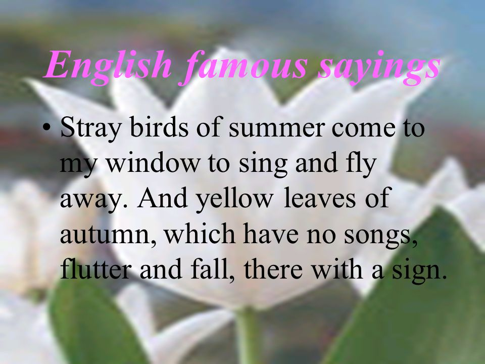 English famous sayings Stray birds of summer come to my window to sing and fly away.