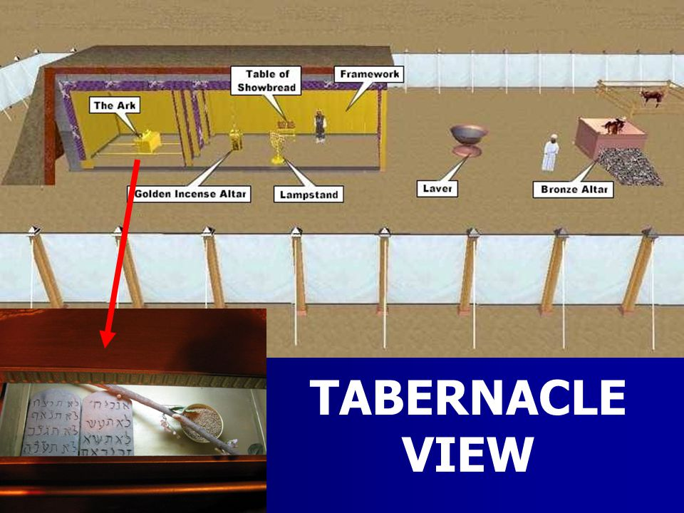 TABERNACLE VIEW