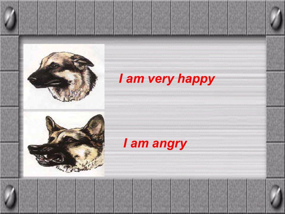 I am very happy I am angry