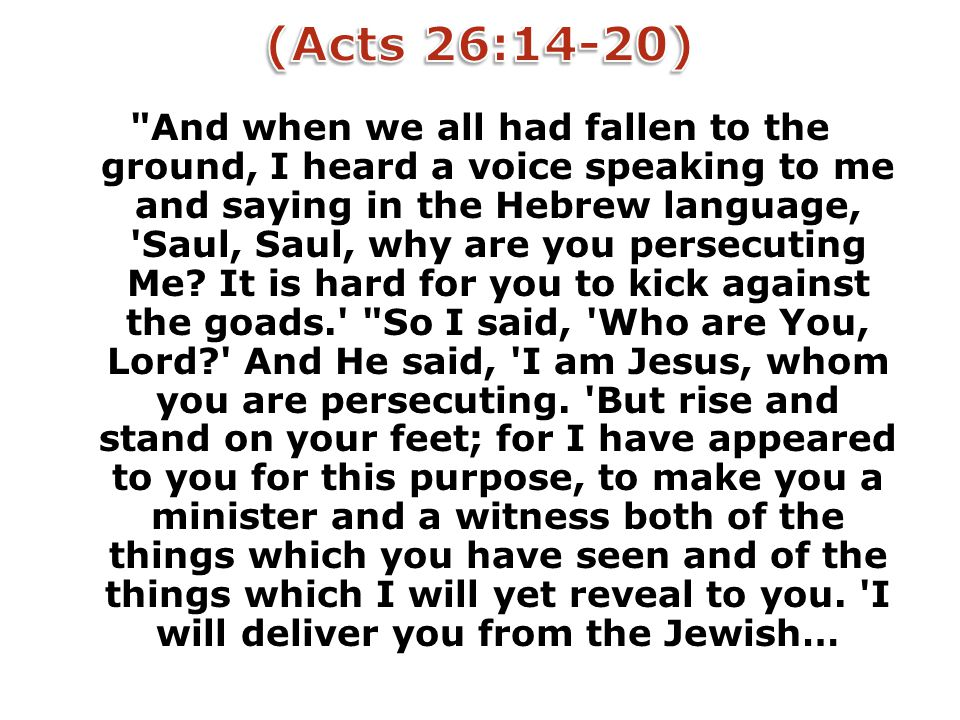 And when we all had fallen to the ground, I heard a voice speaking to me and saying in the Hebrew language, Saul, Saul, why are you persecuting Me.