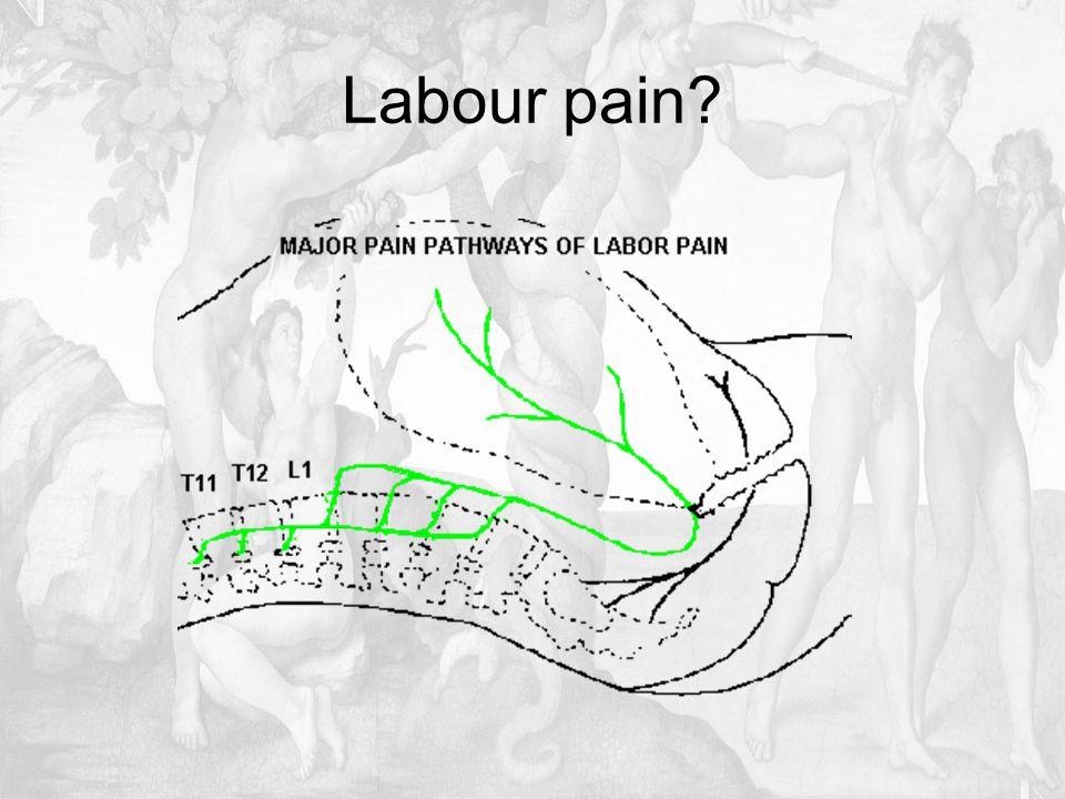 Labour pain