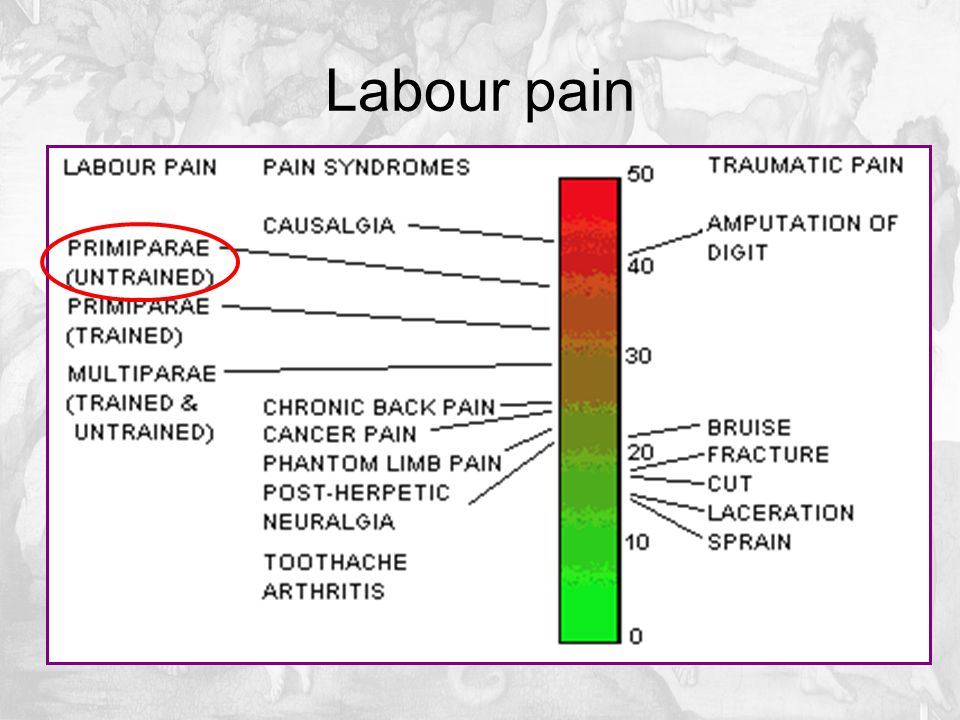 Mean VAS pain scores as a function of time for meperidine, remifentanil, and fentanyl.