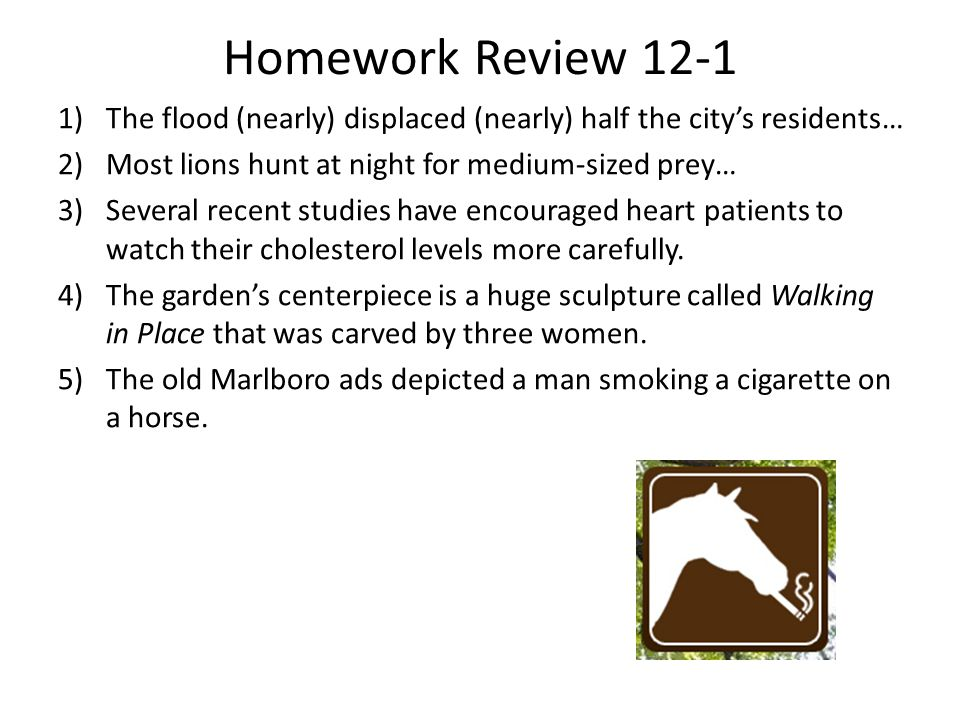 Homework Review 12-1 1)The flood (nearly) displaced (nearly) half the city's residents… 2)Most lions hunt at night for medium-sized prey… 3)Several re