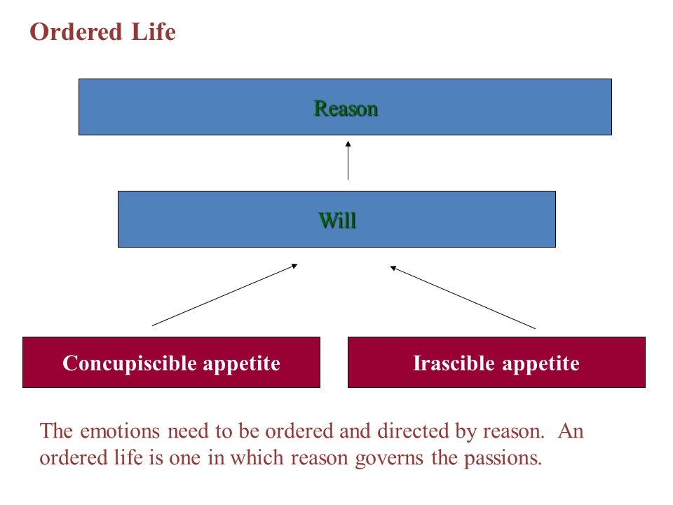 Ordered Life Concupiscible appetiteIrascible appetite Will Reason The emotions need to be ordered and directed by reason. An ordered life is one in wh