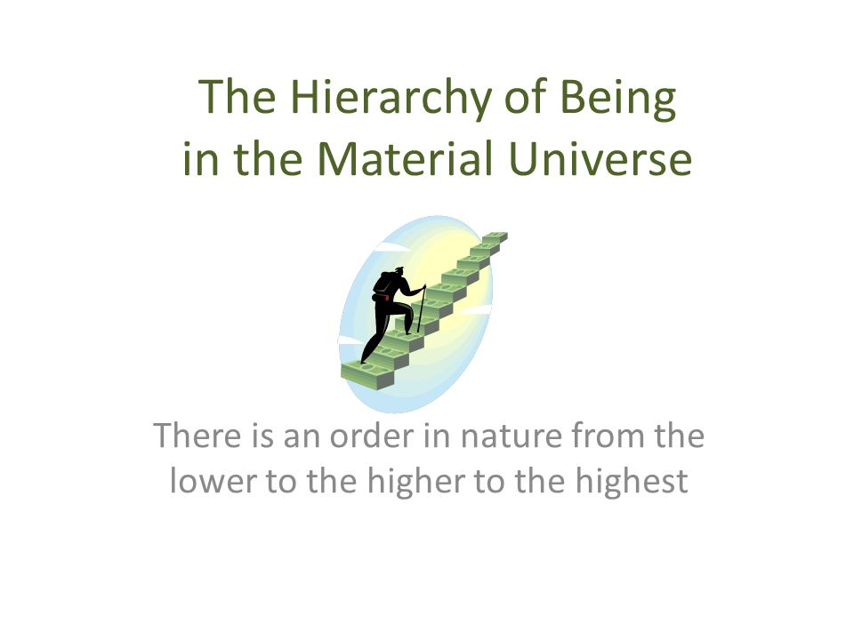 The Hierarchy of Being in the Material Universe There is an order in nature from the lower to the higher to the highest