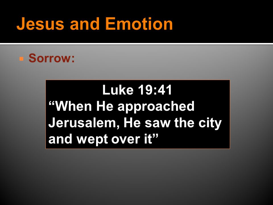  Sorrow: Luke 19:41 When He approached Jerusalem, He saw the city and wept over it