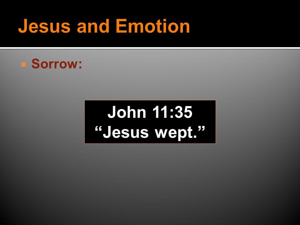  Sorrow: John 11:35 Jesus wept.