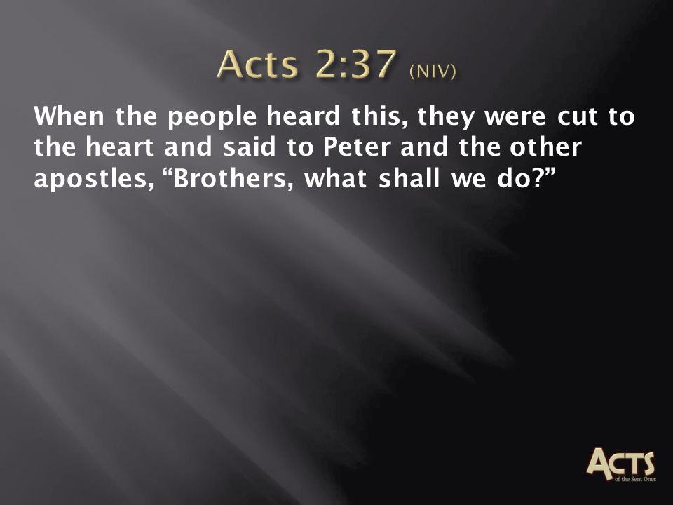 When the people heard this, they were cut to the heart and said to Peter and the other apostles, Brothers, what shall we do?