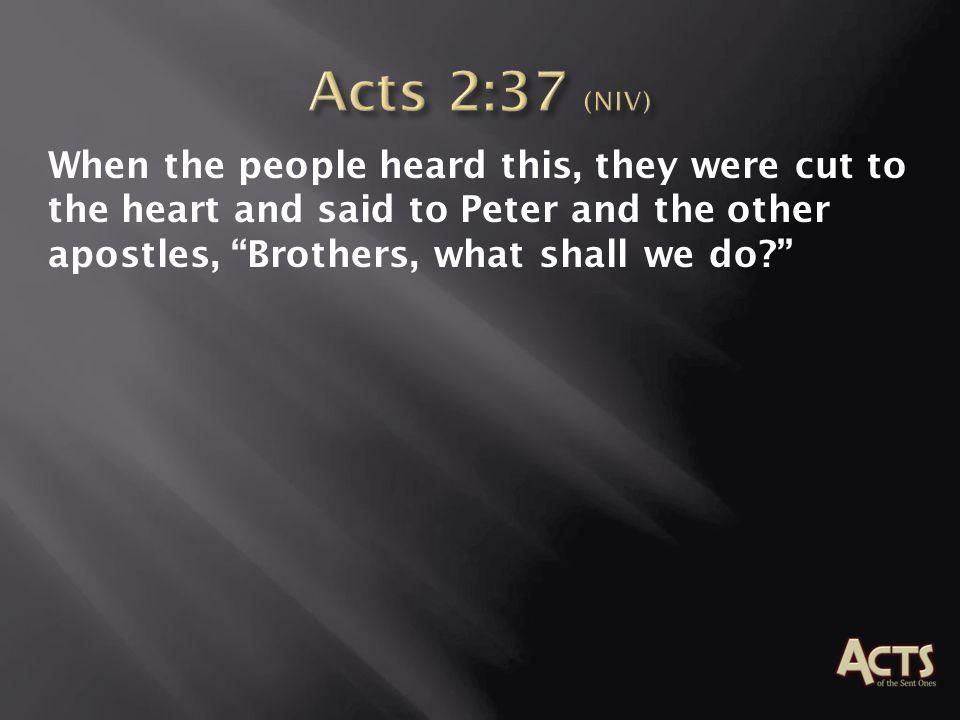 o Hearing o Conviction o Action o Evidence