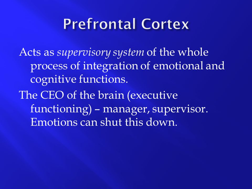 Acts as supervisory system of the whole process of integration of emotional and cognitive functions. The CEO of the brain (executive functioning) – ma