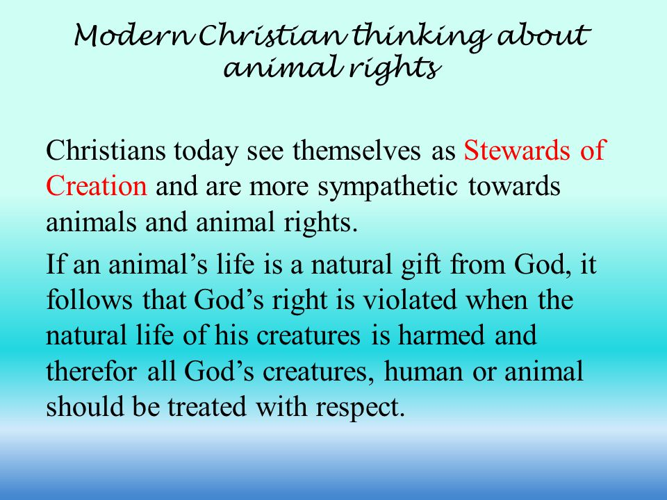 Modern Christian thinking about animal rights Christians today see themselves as Stewards of Creation and are more sympathetic towards animals and animal rights.