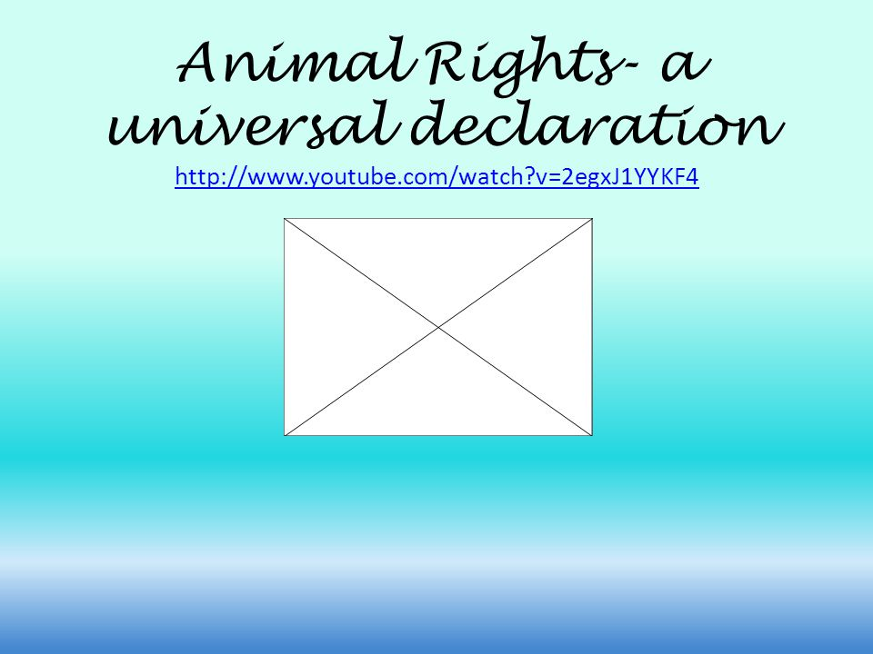 Animal Rights- a universal declaration http://www.youtube.com/watch v=2egxJ1YYKF4 http://www.youtube.com/watch v=2egxJ1YYKF4