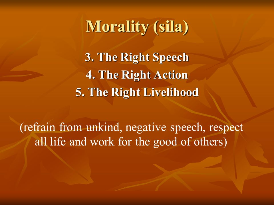 Morality (sila) 3. The Right Speech 4. The Right Action 5.