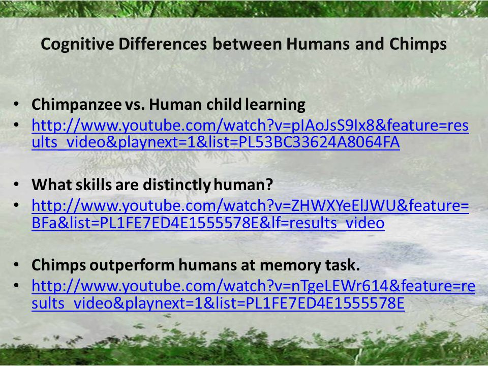Cognitive Differences between Humans and Chimps Chimpanzee vs.
