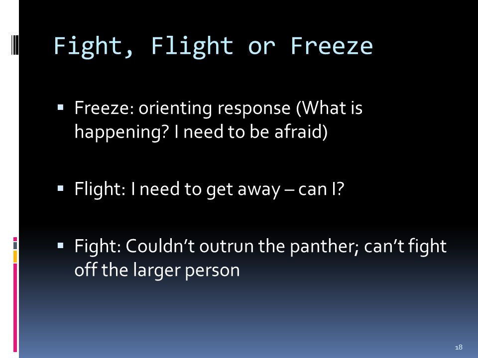 Fight, Flight or Freeze  Freeze: orienting response (What is happening.