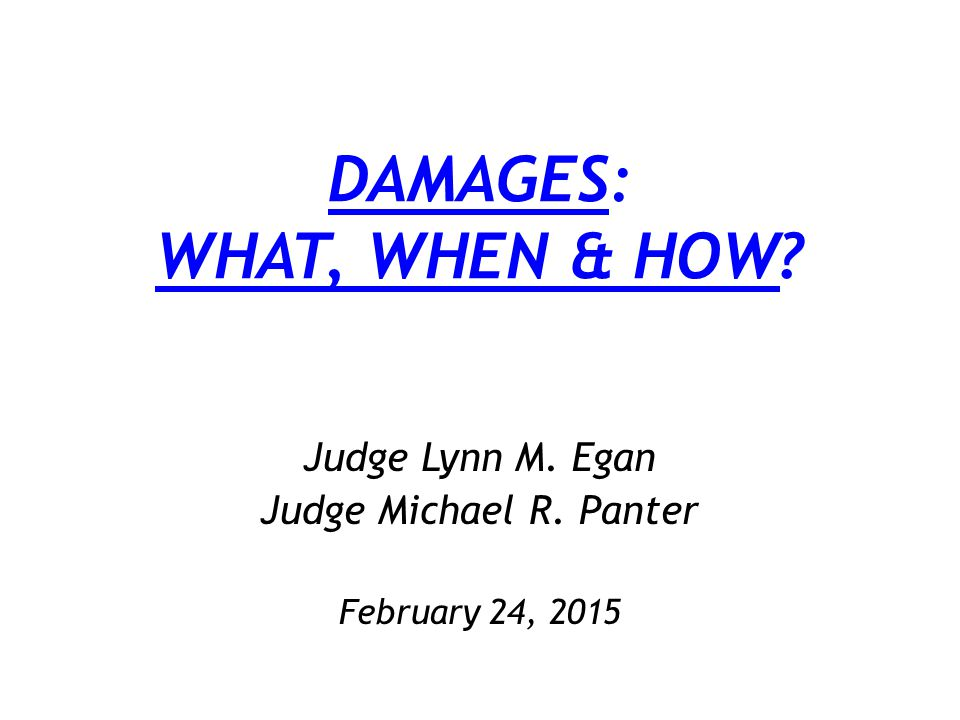 DAMAGES: WHAT, WHEN & HOW? Judge Lynn M. Egan Judge Michael R. Panter February 24, 2015