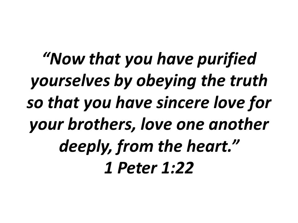 """Now that you have purified yourselves by obeying the truth so that you have sincere love for your brothers, love one another deeply, from the heart."""