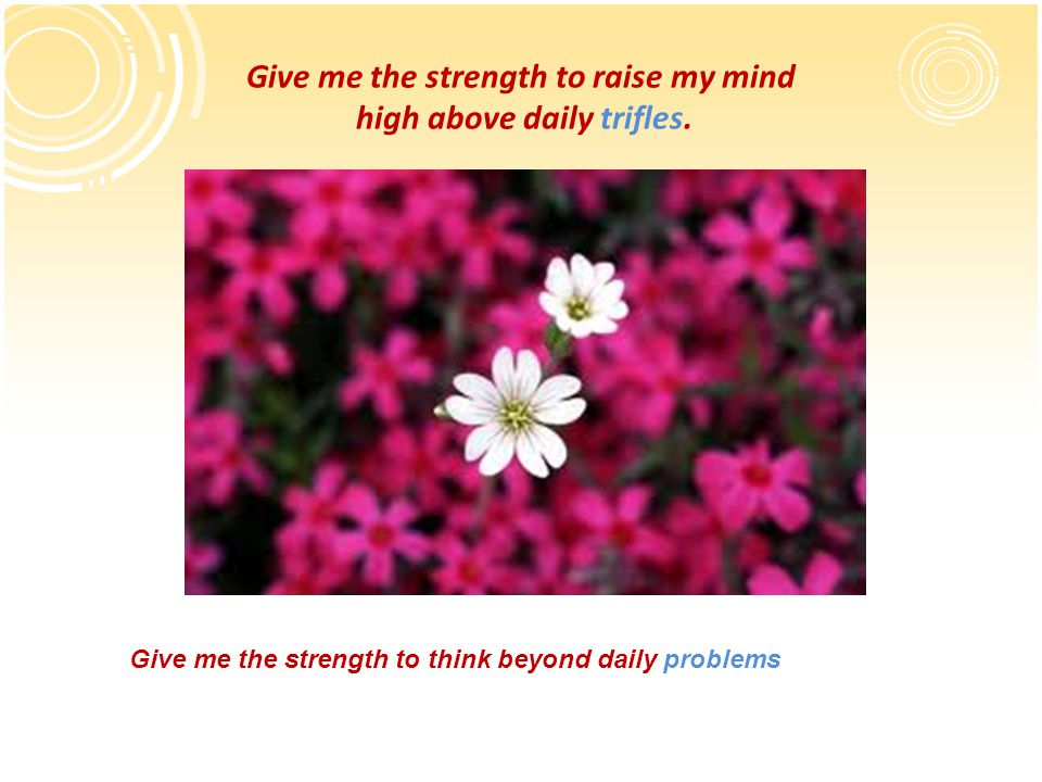 Give me the strength to raise my mind high above daily trifles. Give me the strength to think beyond daily problems