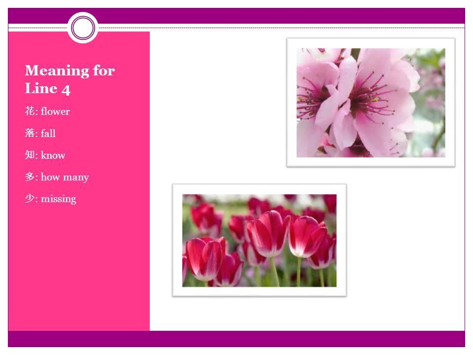 Meaning for Line 4 花 : flower 落 : fall 知 : know 多 : how many 少 : missing