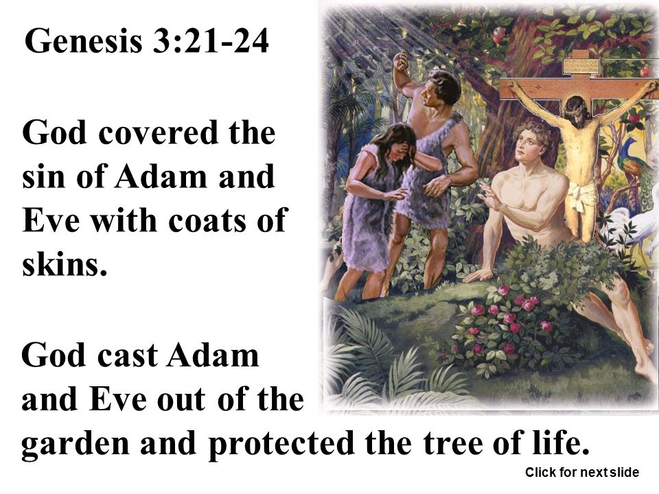 "Genesis 3:20 ""Adam called his wife's name Eve; because she was the mother of all living."" Click for next slide"