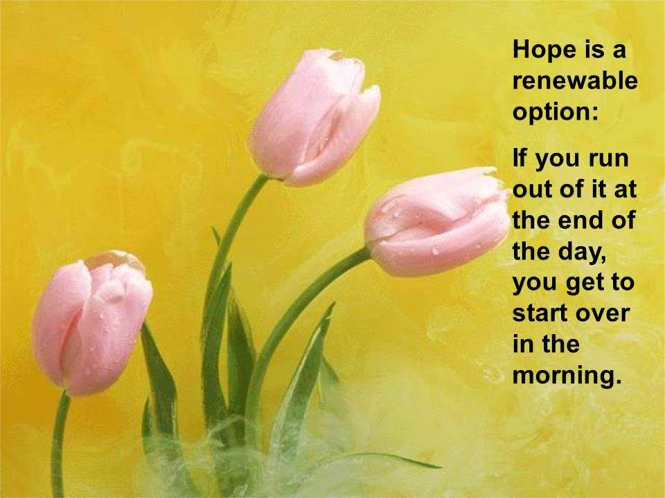 Hope is a renewable option: If you run out of it at the end of the day, you get to start over in the morning.