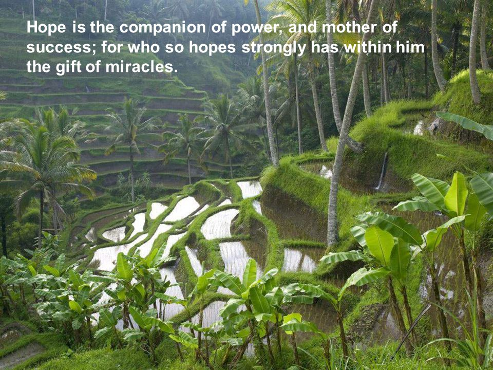 Hope is the companion of power, and mother of success; for who so hopes strongly has within him the gift of miracles.