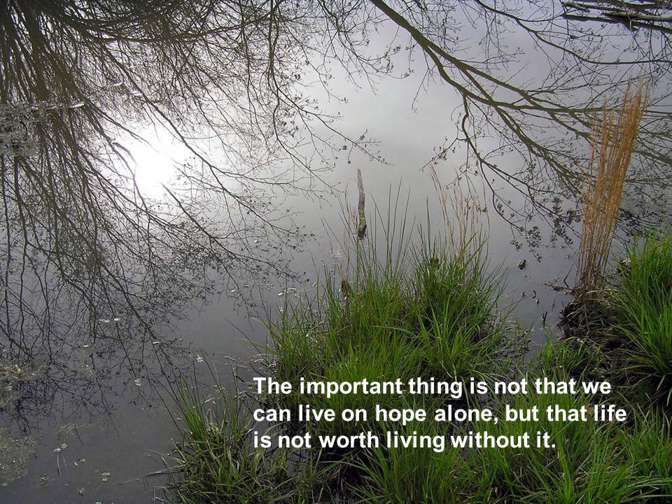 The important thing is not that we can live on hope alone, but that life is not worth living without it.
