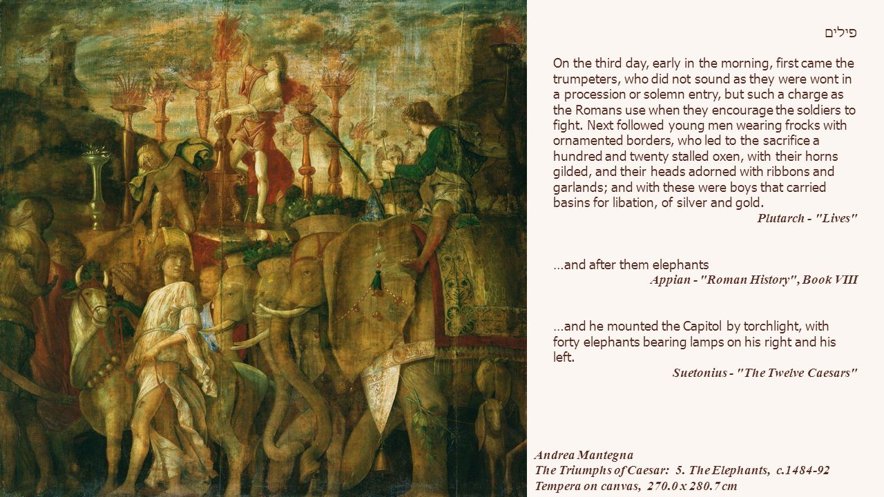 Andrea Mantegna The Triumphs of Caesar: 5.