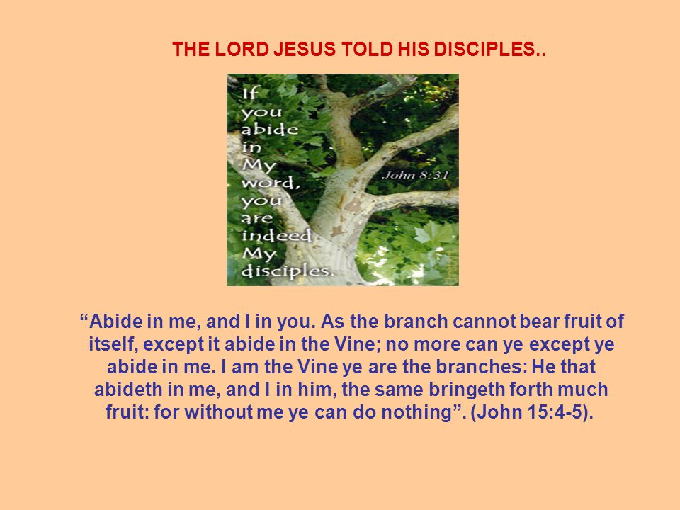 THE LORD JESUS TOLD HIS DISCIPLES.. Abide in me, and I in you.