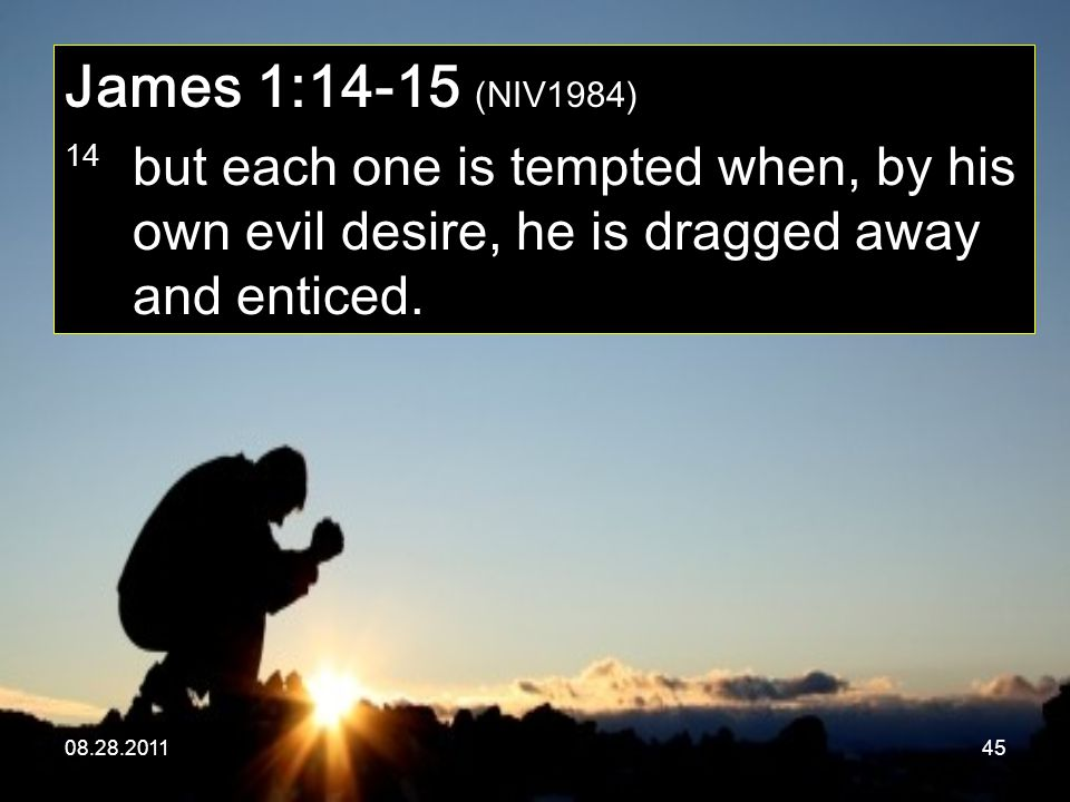08.28.201145 James 1:14-15 (NIV1984) 14 but each one is tempted when, by his own evil desire, he is dragged away and enticed.
